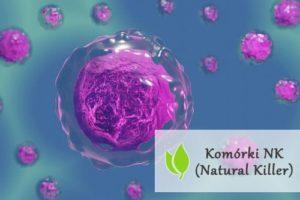 Komórki NK (Natural Killer)
