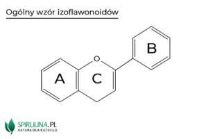 Izoflawonoidy