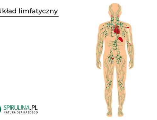 Jak wzmocnić układ limfatyczny?
