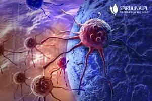 Karcynogeneza