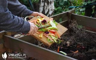 Domowy kompostownik - jak zrobić?